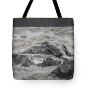 Potomac Torrent Tote Bag