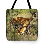 Nursing Fawn Tote Bag