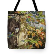 Nuthatch And Creeper Tote Bag