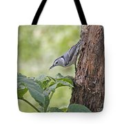 Nuthatch On The Move Tote Bag