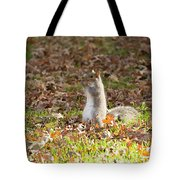 Nuts For Fall Tote Bag