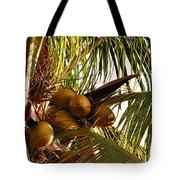 Nuts On Tree  Tote Bag