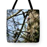 Nuttalls Woodpecker  Tote Bag