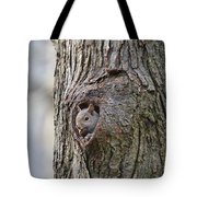 Nutty Squirrel Surprise  Tote Bag