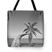 Oahu Palms Tote Bag by Tomas del Amo - Printscapes
