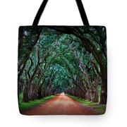 Oak Alley Road Tote Bag
