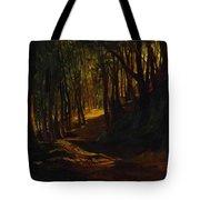 Oak Grove At San Terenzo Tote Bag