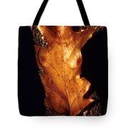 Oak Leaf Tote Bag by Arla Patch