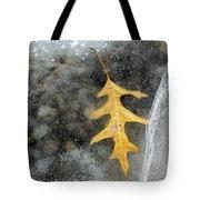 Oak Leaf In Ice Three  Tote Bag