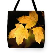 Oak Leaf Trio Tote Bag