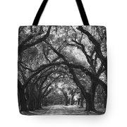 Oak Lined Drive Way, Coastal, South Carolina  Tote Bag