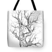 Oak Tree Abstract Study Tote Bag