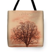 Oak Tree Alone  Tote Bag