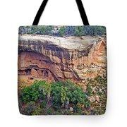 Oak Tree House - Mesa Verde National Park Tote Bag