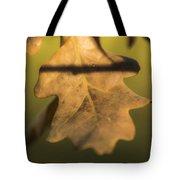 Oak Tree Leaf Tote Bag