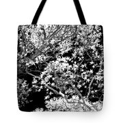 Oak Tree Light Tote Bag