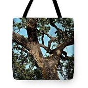 Oak Tree Two Tote Bag