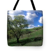 Oak Tree With Clouds Tote Bag