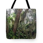 Oak Tree With Spanish Moss Tote Bag