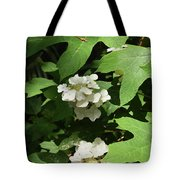 Oakleaf Hydrangea Floral Tote Bag