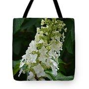 Oakleaf Hydrangea Tote Bag