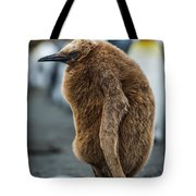 Oakum Boy King Penguin Asleep On Beach Tote Bag