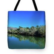 Oasis Reflection Tote Bag