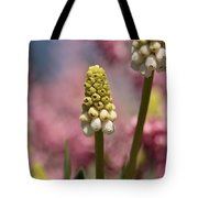 Oberon's Rainbow Forest Tote Bag