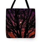 Ocala Moonrise Tote Bag