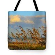 ocean/ Beach Tote Bag