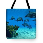 Ocean Striped Dolphins Tote Bag