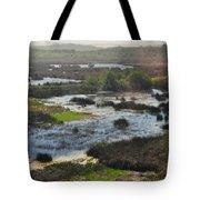 Oceano Dunes Natural Preserve Portrait Tote Bag