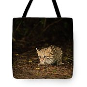Ocelot Crouching At Night Looking For Food Tote Bag