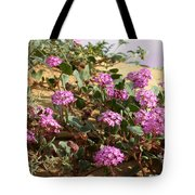 Ocotilla Wells Pink Flowers 2 Tote Bag