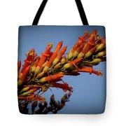 Ocotillo Flower Tote Bag