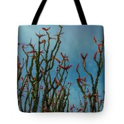 Ocotillo Flowers Tote Bag