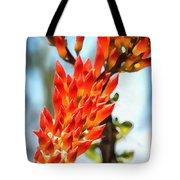 Octillo Flower. Tote Bag
