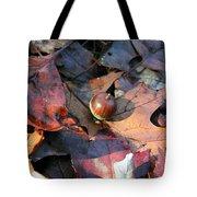 October Acorn Tote Bag