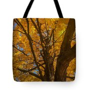 October Day Tote Bag