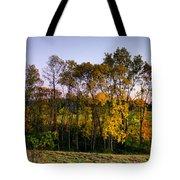 October Higlights Tote Bag