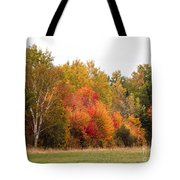 October In Maine 4 Tote Bag