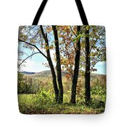 October In Vermont Tote Bag