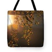 October Light Tote Bag