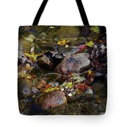 October Puddles Tote Bag