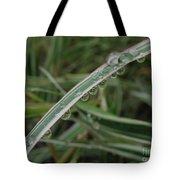 October Rain 3 Tote Bag