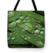 Drops Of Rain Tote Bag