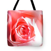 October Rose Close Up Tote Bag