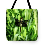 Odanate With Wings Spread Tote Bag