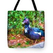 Odd Looking Duck In Swansboro Nc 2 Tote Bag