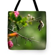 Odd Pose - Hummingbird Tote Bag